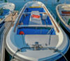 chipironea bateau moteur occasion